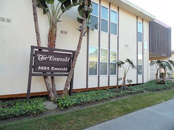 3624 Emerald St. 1-2 Beds Apartment for Rent Photo Gallery 1