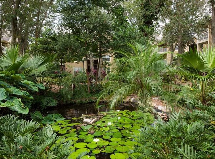 Pond Surrounded by Natural View at Enclave at Lake Underhill, Florida