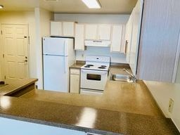 2515 Colby Avenue Studio-2 Beds Apartment for Rent Photo Gallery 1
