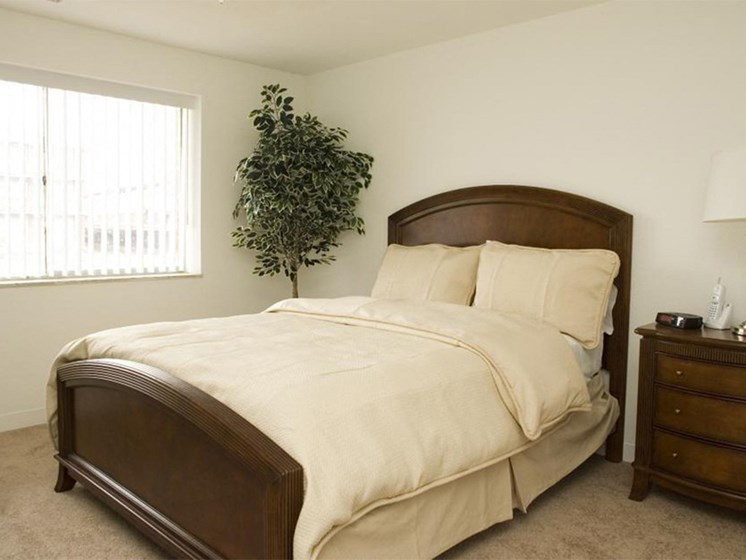 Cream Colored Bed