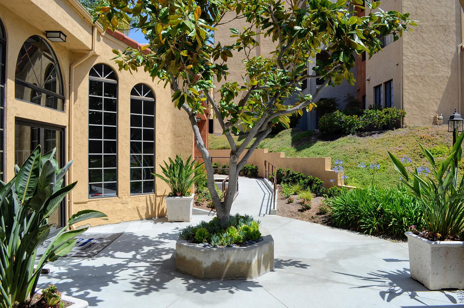 Professional Landscaping at Canyon Villa Apartments, 91910, CA