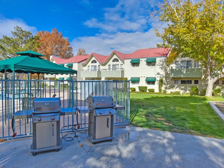 Luxury Apartment Community Outdoor BBQ Picnic Area