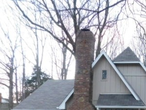 1047 Grouse Meadow 3 Beds House for Rent Photo Gallery 1