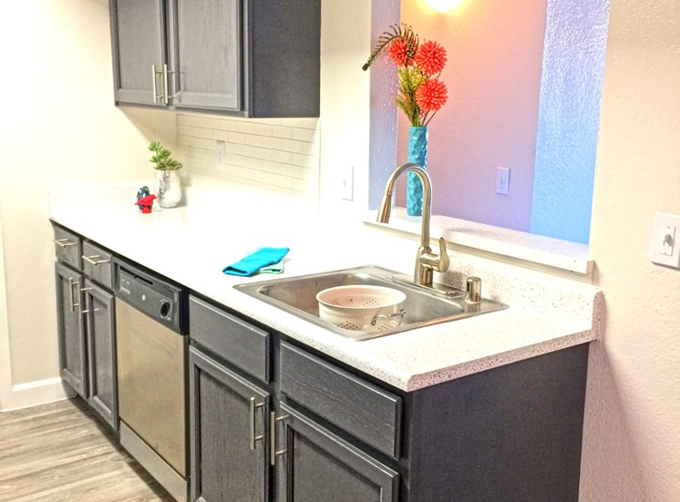 Renovated kitche with appliances
