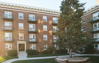 2464 Harney Studio-2 Beds Apartment for Rent Photo Gallery 1
