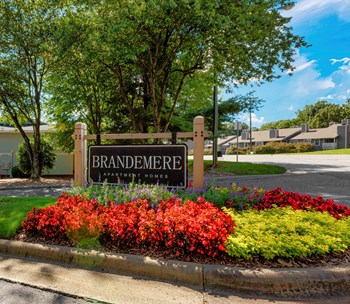 7013 Brandemere Lane 1-2 Beds Apartment for Rent Photo Gallery 1