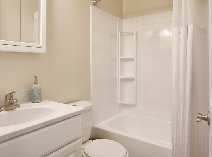 Spa-Inspired Soaking Tubs at The Townes At Holly Station, Waldorf