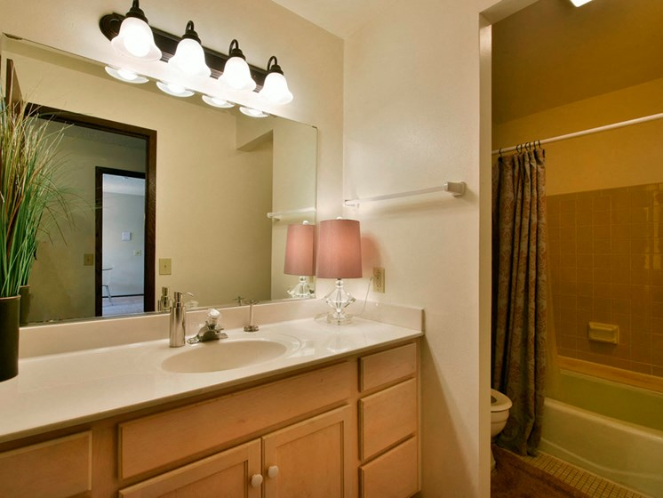 Apartments in Fitchburg, Wisconsin bathroom