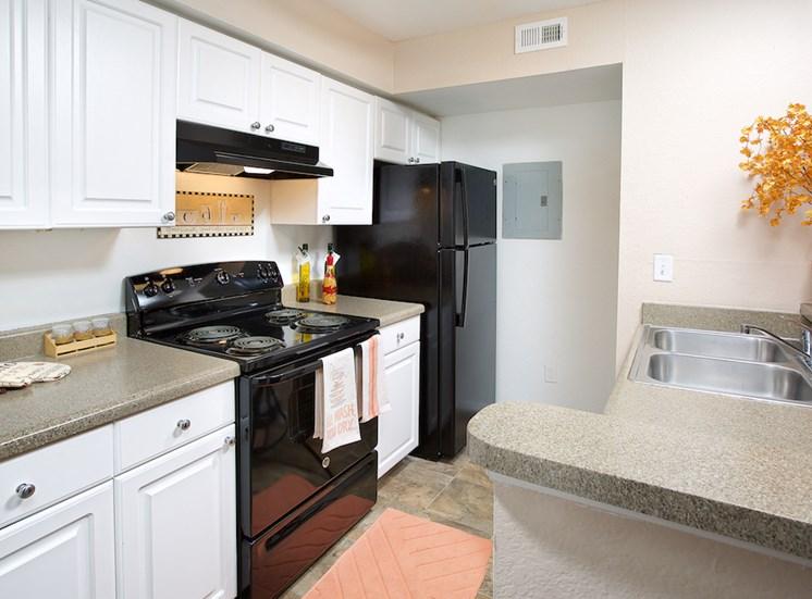 The Point at Naples Apartment Homes Naples, FL 34112 kitchen with sleek black appliances