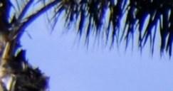 Resort-Inspired Swimming Pools and Sundeck, at Scottsdale Horizon, Arizona