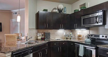 4550 North Braeswood Blvd 1 Bed Apartment for Rent Photo Gallery 1