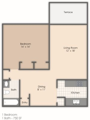 1 Bedroom 1 Bath B