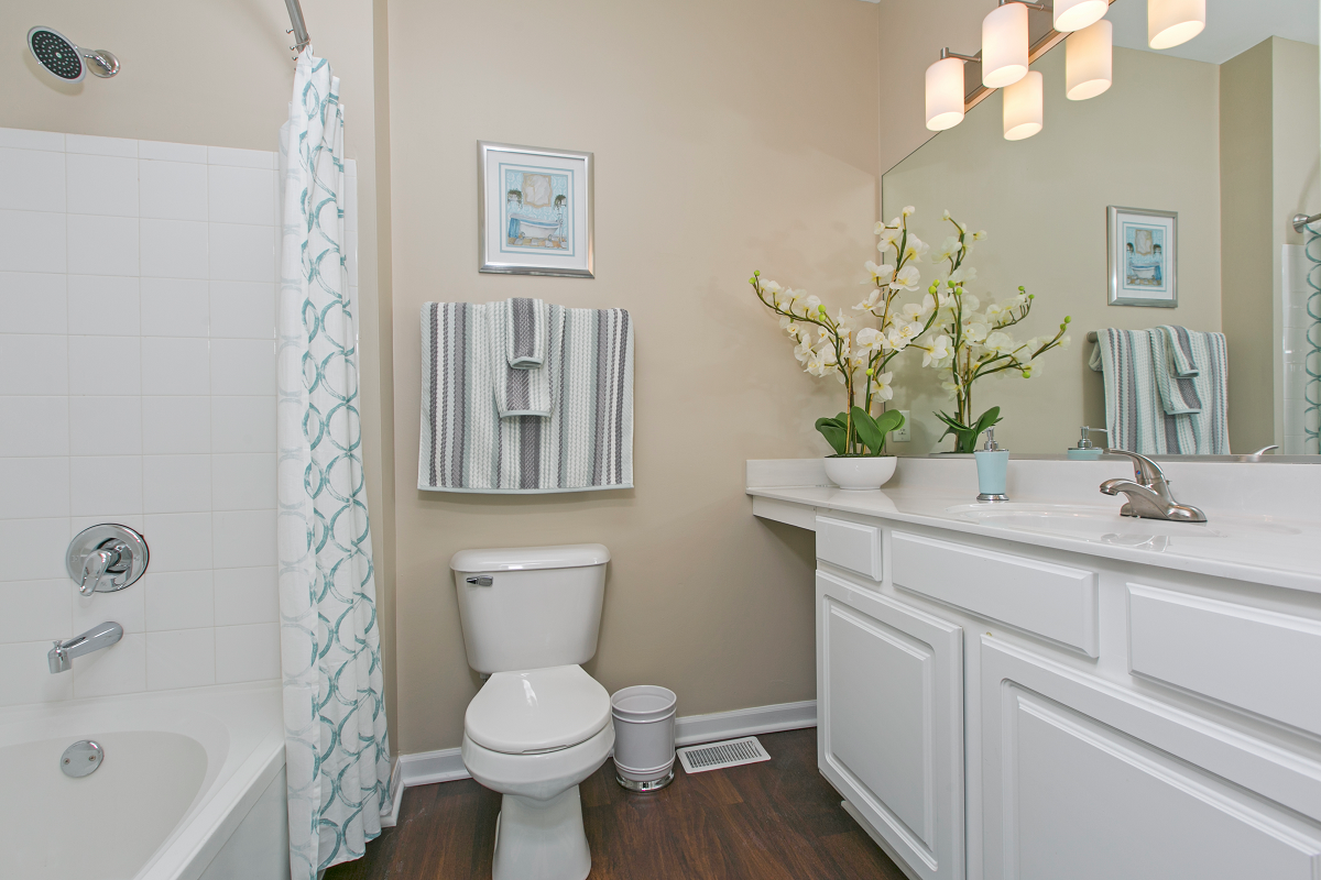 Expansive Bathroom Counter Space at River Run at Naperville, Illinois, 60564