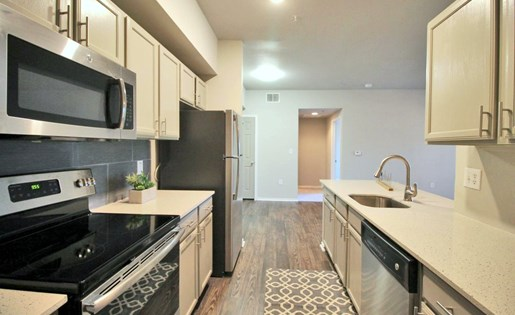 Gourmet Kitchens with Dishwasher and Disposal at The Redland, San Antonio, TX