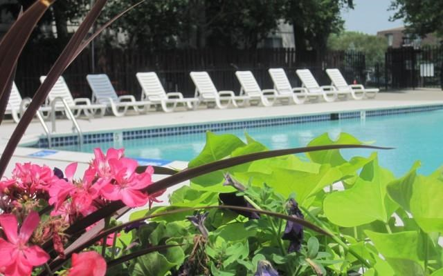 Three Season Heated Sparkling Pool at Knottingham Apartments, MI 48036