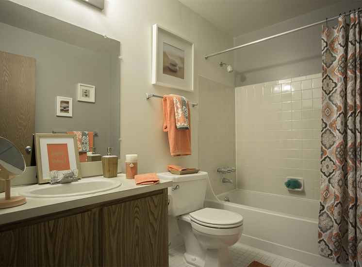 Bathroom with ceramic tile tub surrounds at Woodland Villa Apartments in Westland