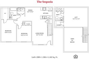 The Sequoia