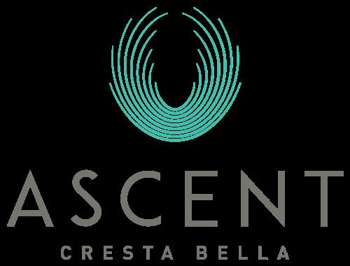 Ascent Cresta Bella, 19702 Bella Loma Drive, San Antonio, TX 78256