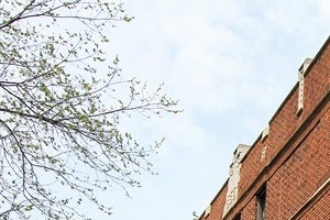 8456 S Wabash Ave 2-3 Beds Apartment for Rent Photo Gallery 1