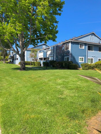 404 Rico St 1-2 Beds Apartment for Rent Photo Gallery 1