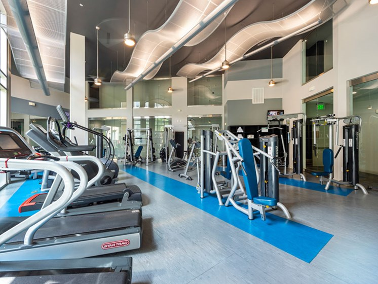 Fitness Center With Modern Equipment at Domain at CityCentre, Texas, 77024