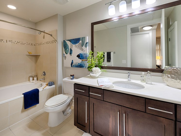 Luxurious Bathrooms at Domain at CityCentre, Houston, Texas
