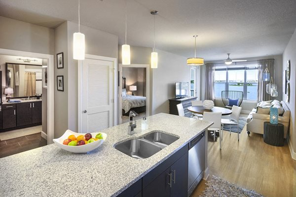 Granite Counter Tops at Lake Vue, 7119 Sand Lake Reserve Drive, Orlando