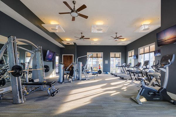 Cardio Equipment at Lake Vue, 7119 Sand Lake Reserve Drive, Orlando, FL