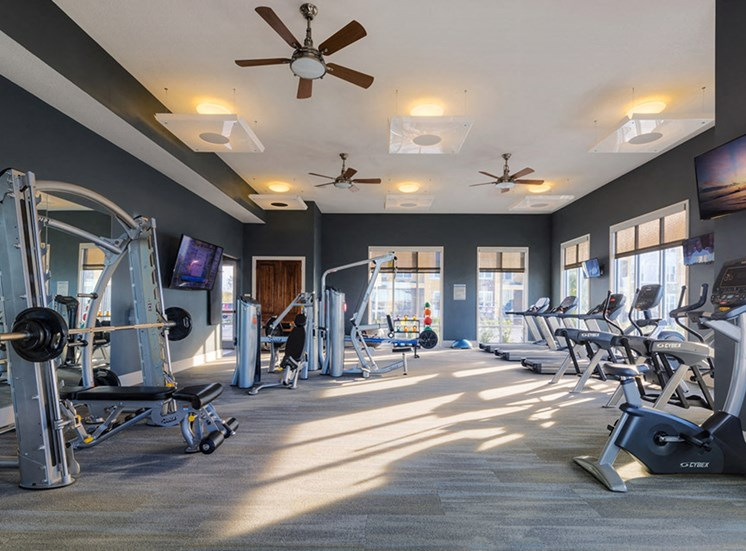 Fully Equipped Fitness Center at Lake Vue, 7119 Sand Lake Reserve Drive, FL 32819