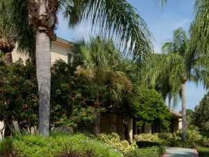 3516 Coronado Dr 1-3 Beds Apartment for Rent Photo Gallery 1