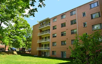 6000 42nd Avenue 1-2 Beds Apartment for Rent Photo Gallery 1