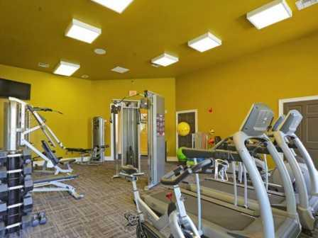 Fitness Center with Updated Equipment at RiverTree, 5959 Bandera Spring Circle, 33578