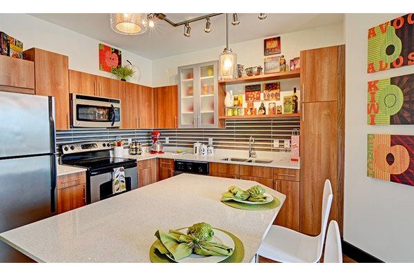 Fusion 1560 kitchen