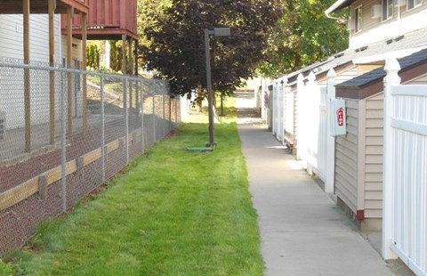 Property line fence