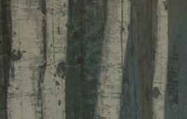Princeton Meadows background 1