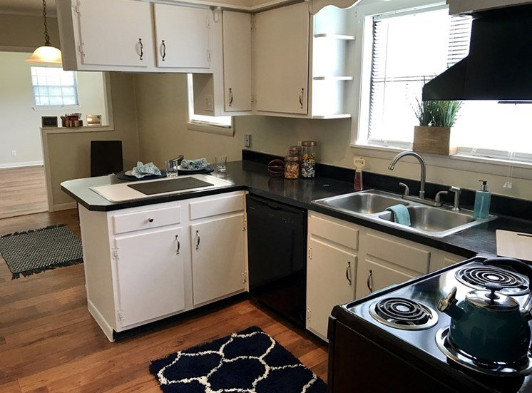 Kitchen Furnished with Efficient Appliances