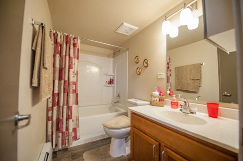 Remodeled bath at River Run