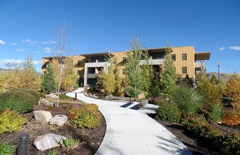 Landscaping near apartments