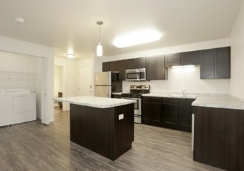 3807 30Th Ave S Studio-2 Beds Apartment for Rent Photo Gallery 1
