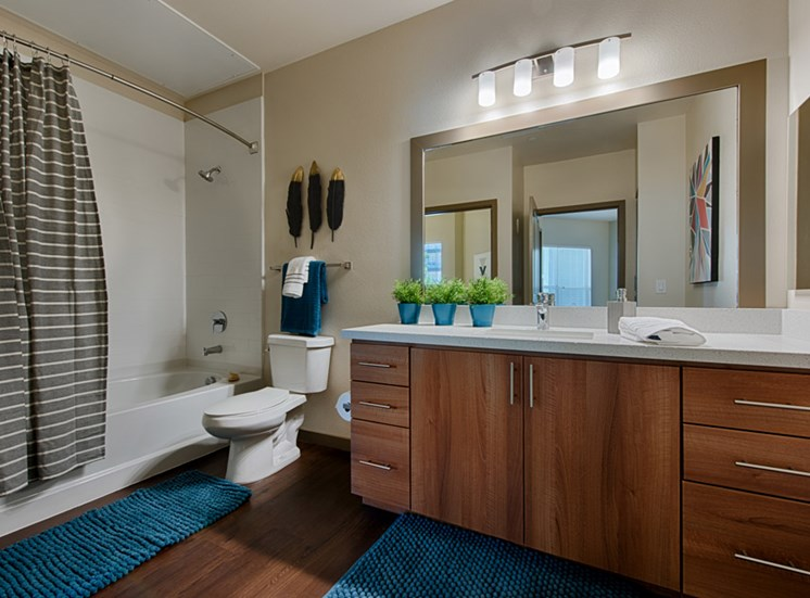 Garden-style Soaking Tubs with Tile Surrounds at Tempo at McClintock Station, 1831 East Apache Blvd, Tempe, 85281