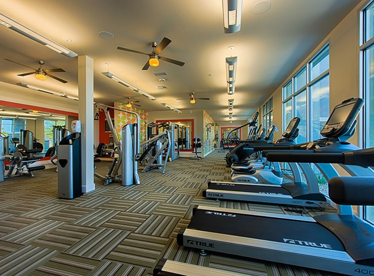 Fitness Center with updated equipment at Tempo at McClintock Station, 1831 East Apache Blvd, Tempe
