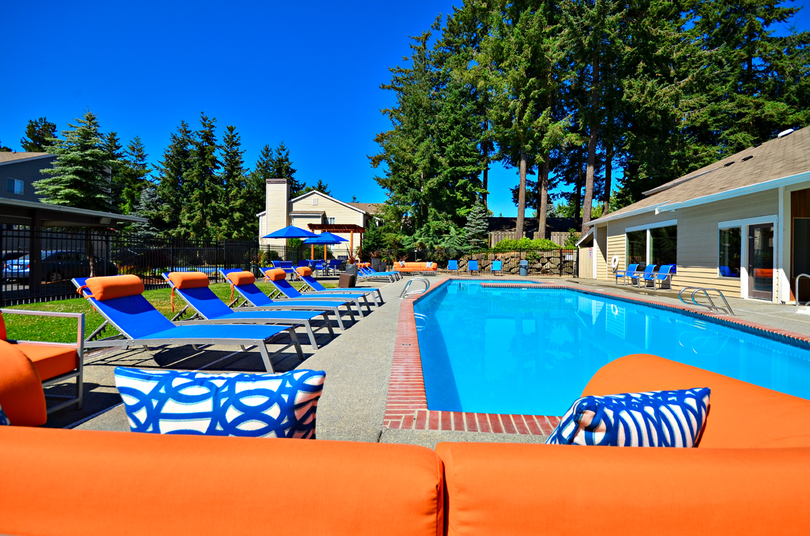 Sunshine and Pool_The Windsor_Renton WA