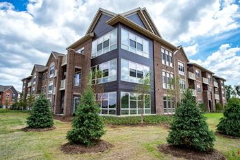 9603 Paragon Street 1-2 Beds Apartment for Rent Photo Gallery 1