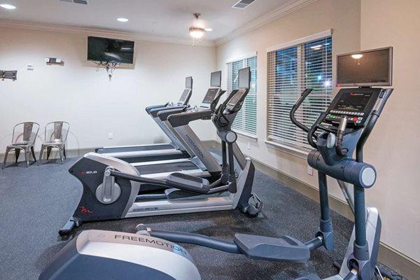 Fitness Center at The Village at Apison Pike, Ooltewah Apartments