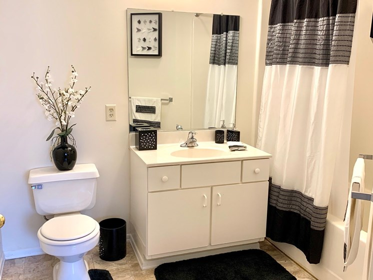 Bright Master Bathroom at Blueberry Hill Apartments, Rochester, NY