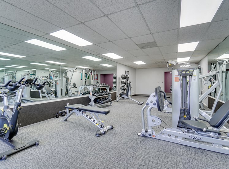 Free Weights in Gym at La Vista Terrace, California