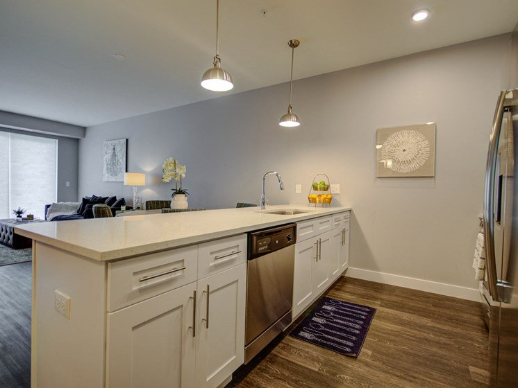 101 West Liberty Street Model Apartment Kitchen Photo