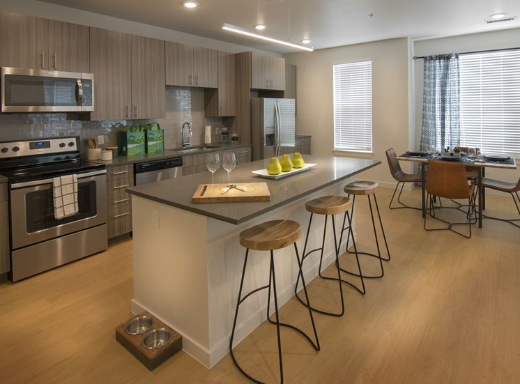 Bright and Spacious Kitchens with Stainless Steel Appliances at Cycle Apartments, Ft. Collins, CO