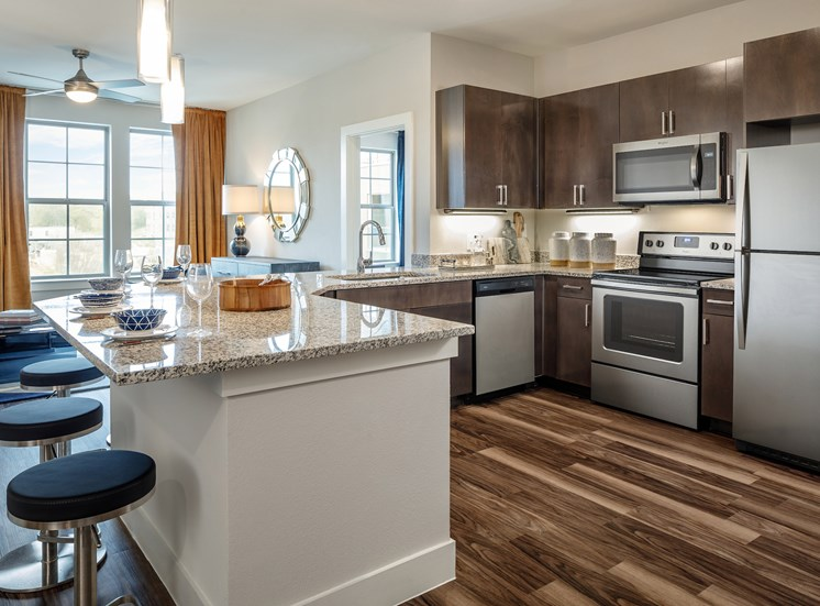 Medium Brown Plank Flooring in Living, Dining, Kitchen, and Bath at Main Street Lofts, Mansfield, TX 76063