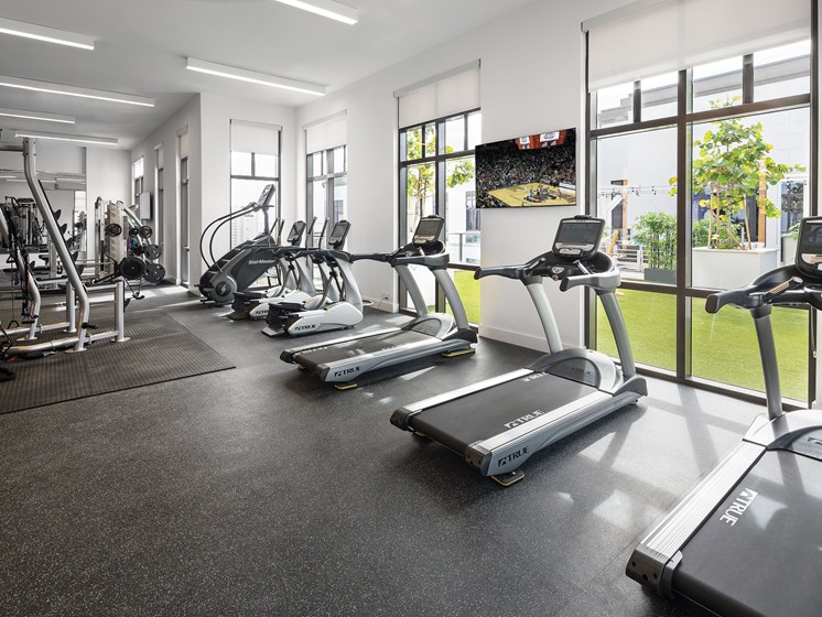 Fully Equipped Fitness Center at Avanti, St. Petersburg, FL, 33701